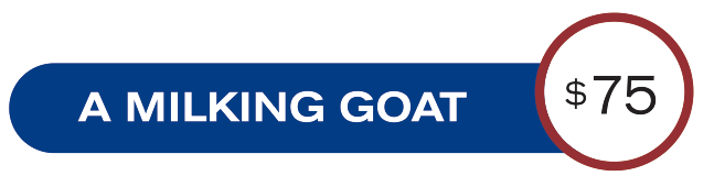 a-milking-goat