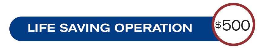 life-saving-operation