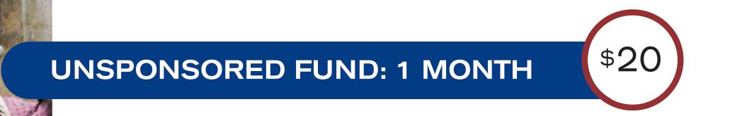 unsponsored-fund